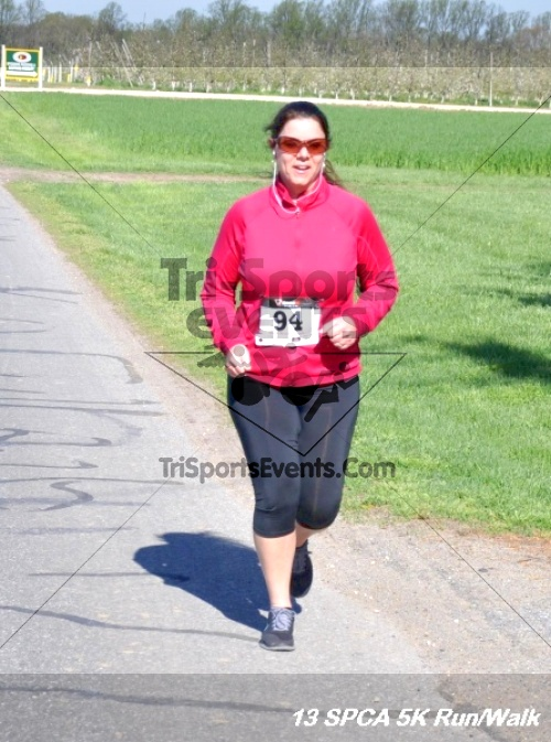SPCA Scamper for Paws & Claws 5K Run/Walk<br><br><br><br><a href='https://www.trisportsevents.com/pics/13_SPCA_5K_135.JPG' download='13_SPCA_5K_135.JPG'>Click here to download.</a><Br><a href='http://www.facebook.com/sharer.php?u=http:%2F%2Fwww.trisportsevents.com%2Fpics%2F13_SPCA_5K_135.JPG&t=SPCA Scamper for Paws & Claws 5K Run/Walk' target='_blank'><img src='images/fb_share.png' width='100'></a>