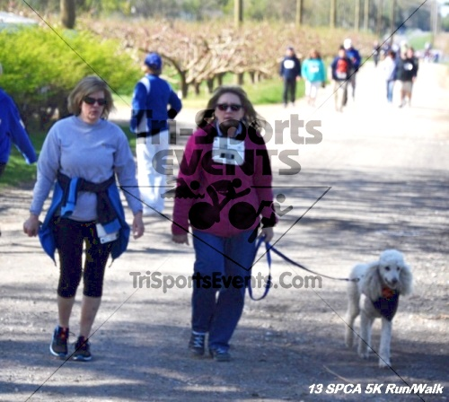 SPCA Scamper for Paws & Claws 5K Run/Walk<br><br><br><br><a href='https://www.trisportsevents.com/pics/13_SPCA_5K_139.JPG' download='13_SPCA_5K_139.JPG'>Click here to download.</a><Br><a href='http://www.facebook.com/sharer.php?u=http:%2F%2Fwww.trisportsevents.com%2Fpics%2F13_SPCA_5K_139.JPG&t=SPCA Scamper for Paws & Claws 5K Run/Walk' target='_blank'><img src='images/fb_share.png' width='100'></a>