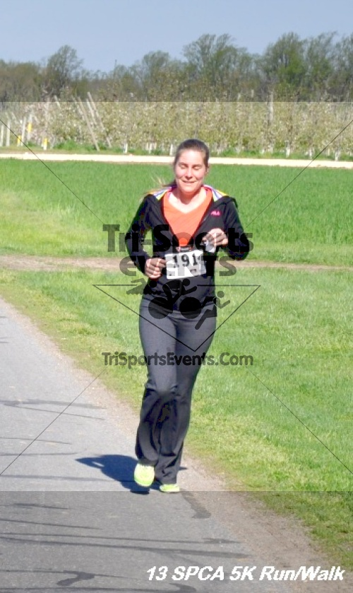 SPCA Scamper for Paws & Claws 5K Run/Walk<br><br><br><br><a href='https://www.trisportsevents.com/pics/13_SPCA_5K_143.JPG' download='13_SPCA_5K_143.JPG'>Click here to download.</a><Br><a href='http://www.facebook.com/sharer.php?u=http:%2F%2Fwww.trisportsevents.com%2Fpics%2F13_SPCA_5K_143.JPG&t=SPCA Scamper for Paws & Claws 5K Run/Walk' target='_blank'><img src='images/fb_share.png' width='100'></a>