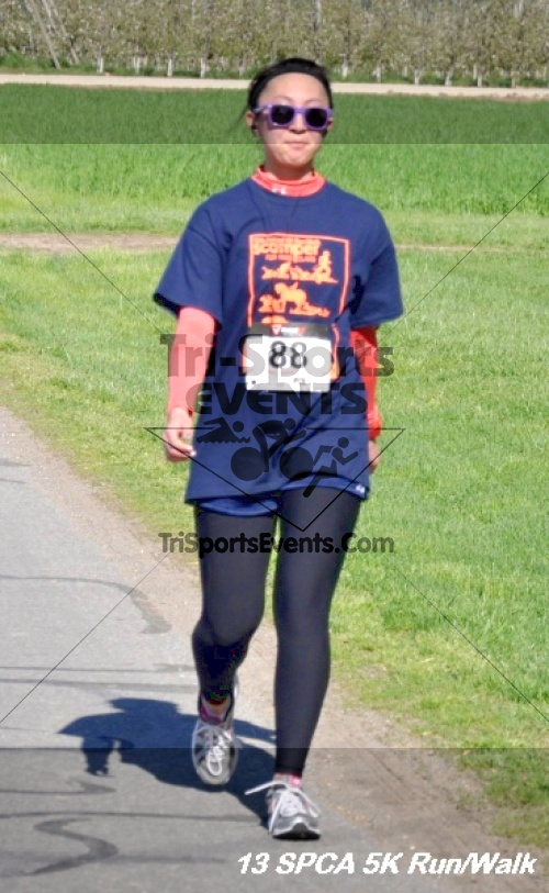 SPCA Scamper for Paws & Claws 5K Run/Walk<br><br><br><br><a href='https://www.trisportsevents.com/pics/13_SPCA_5K_144.JPG' download='13_SPCA_5K_144.JPG'>Click here to download.</a><Br><a href='http://www.facebook.com/sharer.php?u=http:%2F%2Fwww.trisportsevents.com%2Fpics%2F13_SPCA_5K_144.JPG&t=SPCA Scamper for Paws & Claws 5K Run/Walk' target='_blank'><img src='images/fb_share.png' width='100'></a>