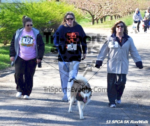 SPCA Scamper for Paws & Claws 5K Run/Walk<br><br><br><br><a href='https://www.trisportsevents.com/pics/13_SPCA_5K_149.JPG' download='13_SPCA_5K_149.JPG'>Click here to download.</a><Br><a href='http://www.facebook.com/sharer.php?u=http:%2F%2Fwww.trisportsevents.com%2Fpics%2F13_SPCA_5K_149.JPG&t=SPCA Scamper for Paws & Claws 5K Run/Walk' target='_blank'><img src='images/fb_share.png' width='100'></a>