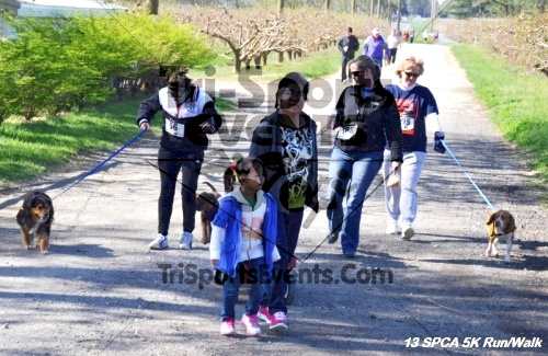 SPCA Scamper for Paws & Claws 5K Run/Walk<br><br><br><br><a href='https://www.trisportsevents.com/pics/13_SPCA_5K_152.JPG' download='13_SPCA_5K_152.JPG'>Click here to download.</a><Br><a href='http://www.facebook.com/sharer.php?u=http:%2F%2Fwww.trisportsevents.com%2Fpics%2F13_SPCA_5K_152.JPG&t=SPCA Scamper for Paws & Claws 5K Run/Walk' target='_blank'><img src='images/fb_share.png' width='100'></a>