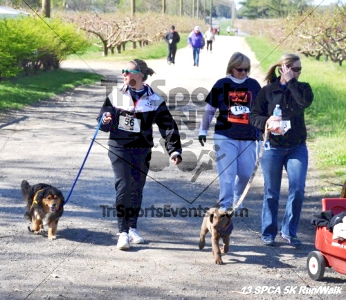 SPCA Scamper for Paws & Claws 5K Run/Walk<br><br><br><br><a href='https://www.trisportsevents.com/pics/13_SPCA_5K_153.JPG' download='13_SPCA_5K_153.JPG'>Click here to download.</a><Br><a href='http://www.facebook.com/sharer.php?u=http:%2F%2Fwww.trisportsevents.com%2Fpics%2F13_SPCA_5K_153.JPG&t=SPCA Scamper for Paws & Claws 5K Run/Walk' target='_blank'><img src='images/fb_share.png' width='100'></a>