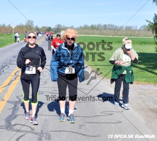 SPCA Scamper for Paws & Claws 5K Run/Walk<br><br><br><br><a href='https://www.trisportsevents.com/pics/13_SPCA_5K_158.JPG' download='13_SPCA_5K_158.JPG'>Click here to download.</a><Br><a href='http://www.facebook.com/sharer.php?u=http:%2F%2Fwww.trisportsevents.com%2Fpics%2F13_SPCA_5K_158.JPG&t=SPCA Scamper for Paws & Claws 5K Run/Walk' target='_blank'><img src='images/fb_share.png' width='100'></a>