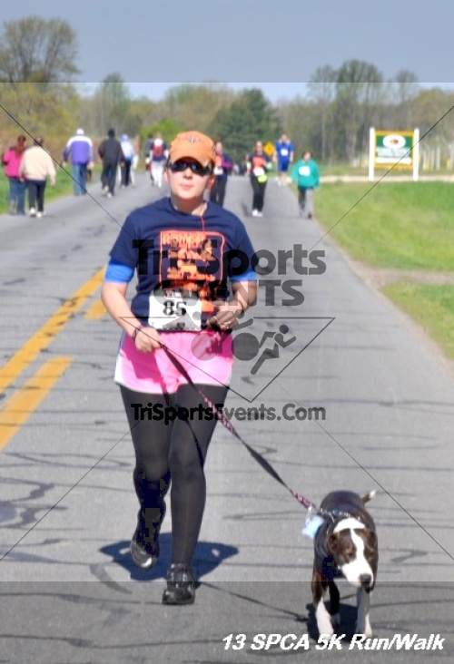 SPCA Scamper for Paws & Claws 5K Run/Walk<br><br><br><br><a href='https://www.trisportsevents.com/pics/13_SPCA_5K_162.JPG' download='13_SPCA_5K_162.JPG'>Click here to download.</a><Br><a href='http://www.facebook.com/sharer.php?u=http:%2F%2Fwww.trisportsevents.com%2Fpics%2F13_SPCA_5K_162.JPG&t=SPCA Scamper for Paws & Claws 5K Run/Walk' target='_blank'><img src='images/fb_share.png' width='100'></a>