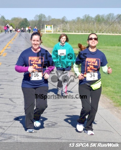 SPCA Scamper for Paws & Claws 5K Run/Walk<br><br><br><br><a href='https://www.trisportsevents.com/pics/13_SPCA_5K_165.JPG' download='13_SPCA_5K_165.JPG'>Click here to download.</a><Br><a href='http://www.facebook.com/sharer.php?u=http:%2F%2Fwww.trisportsevents.com%2Fpics%2F13_SPCA_5K_165.JPG&t=SPCA Scamper for Paws & Claws 5K Run/Walk' target='_blank'><img src='images/fb_share.png' width='100'></a>