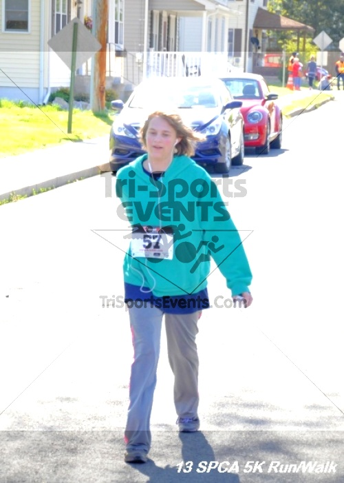 SPCA Scamper for Paws & Claws 5K Run/Walk<br><br><br><br><a href='https://www.trisportsevents.com/pics/13_SPCA_5K_180.JPG' download='13_SPCA_5K_180.JPG'>Click here to download.</a><Br><a href='http://www.facebook.com/sharer.php?u=http:%2F%2Fwww.trisportsevents.com%2Fpics%2F13_SPCA_5K_180.JPG&t=SPCA Scamper for Paws & Claws 5K Run/Walk' target='_blank'><img src='images/fb_share.png' width='100'></a>