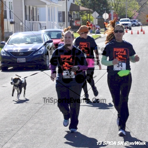 SPCA Scamper for Paws & Claws 5K Run/Walk<br><br><br><br><a href='https://www.trisportsevents.com/pics/13_SPCA_5K_181.JPG' download='13_SPCA_5K_181.JPG'>Click here to download.</a><Br><a href='http://www.facebook.com/sharer.php?u=http:%2F%2Fwww.trisportsevents.com%2Fpics%2F13_SPCA_5K_181.JPG&t=SPCA Scamper for Paws & Claws 5K Run/Walk' target='_blank'><img src='images/fb_share.png' width='100'></a>