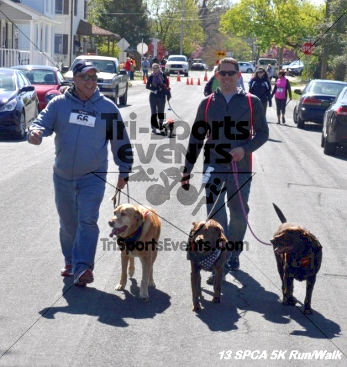 SPCA Scamper for Paws & Claws 5K Run/Walk<br><br><br><br><a href='https://www.trisportsevents.com/pics/13_SPCA_5K_212.JPG' download='13_SPCA_5K_212.JPG'>Click here to download.</a><Br><a href='http://www.facebook.com/sharer.php?u=http:%2F%2Fwww.trisportsevents.com%2Fpics%2F13_SPCA_5K_212.JPG&t=SPCA Scamper for Paws & Claws 5K Run/Walk' target='_blank'><img src='images/fb_share.png' width='100'></a>