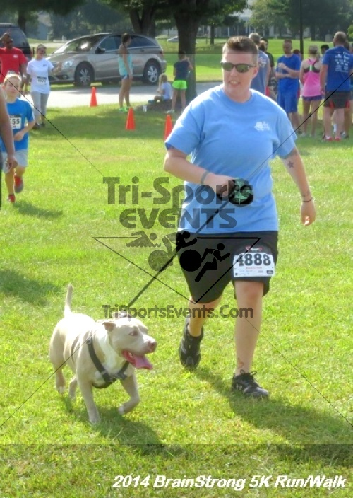 BrainStrong 5K Run/Walk<br><br><br><br><a href='https://www.trisportsevents.com/pics/14_BrainStrong_5K_401.JPG' download='14_BrainStrong_5K_401.JPG'>Click here to download.</a><Br><a href='http://www.facebook.com/sharer.php?u=http:%2F%2Fwww.trisportsevents.com%2Fpics%2F14_BrainStrong_5K_401.JPG&t=BrainStrong 5K Run/Walk' target='_blank'><img src='images/fb_share.png' width='100'></a>