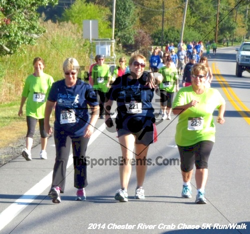 Chester River Crab Chase 5K Run/Walk<br><br><br><br><a href='https://www.trisportsevents.com/pics/14_Chester_River_Crab_Chase_5K_056.JPG' download='14_Chester_River_Crab_Chase_5K_056.JPG'>Click here to download.</a><Br><a href='http://www.facebook.com/sharer.php?u=http:%2F%2Fwww.trisportsevents.com%2Fpics%2F14_Chester_River_Crab_Chase_5K_056.JPG&t=Chester River Crab Chase 5K Run/Walk' target='_blank'><img src='images/fb_share.png' width='100'></a>