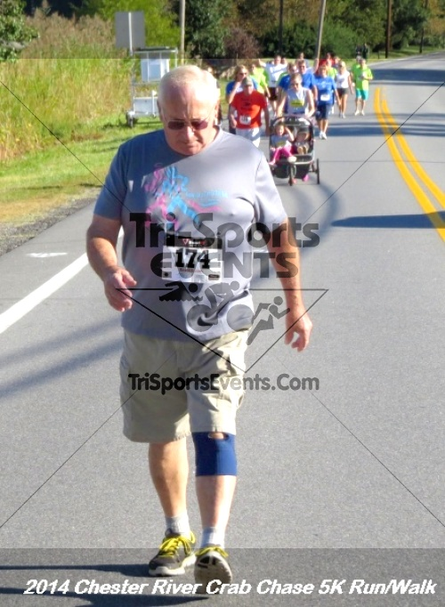 Chester River Crab Chase 5K Run/Walk<br><br><br><br><a href='http://www.trisportsevents.com/pics/14_Chester_River_Crab_Chase_5K_062.JPG' download='14_Chester_River_Crab_Chase_5K_062.JPG'>Click here to download.</a><Br><a href='http://www.facebook.com/sharer.php?u=http:%2F%2Fwww.trisportsevents.com%2Fpics%2F14_Chester_River_Crab_Chase_5K_062.JPG&t=Chester River Crab Chase 5K Run/Walk' target='_blank'><img src='images/fb_share.png' width='100'></a>