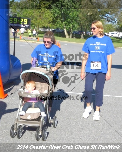 Chester River Crab Chase 5K Run/Walk<br><br><br><br><a href='http://www.trisportsevents.com/pics/14_Chester_River_Crab_Chase_5K_156.JPG' download='14_Chester_River_Crab_Chase_5K_156.JPG'>Click here to download.</a><Br><a href='http://www.facebook.com/sharer.php?u=http:%2F%2Fwww.trisportsevents.com%2Fpics%2F14_Chester_River_Crab_Chase_5K_156.JPG&t=Chester River Crab Chase 5K Run/Walk' target='_blank'><img src='images/fb_share.png' width='100'></a>