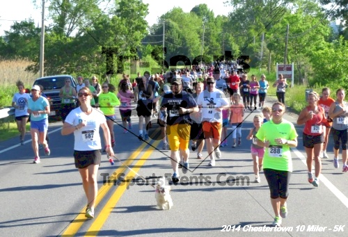 Chestertown Tea Party 5K & 10 Miler<br><br><br><br><a href='https://www.trisportsevents.com/pics/14_Chestertown_10_Miler-5K_069.JPG' download='14_Chestertown_10_Miler-5K_069.JPG'>Click here to download.</a><Br><a href='http://www.facebook.com/sharer.php?u=http:%2F%2Fwww.trisportsevents.com%2Fpics%2F14_Chestertown_10_Miler-5K_069.JPG&t=Chestertown Tea Party 5K & 10 Miler' target='_blank'><img src='images/fb_share.png' width='100'></a>