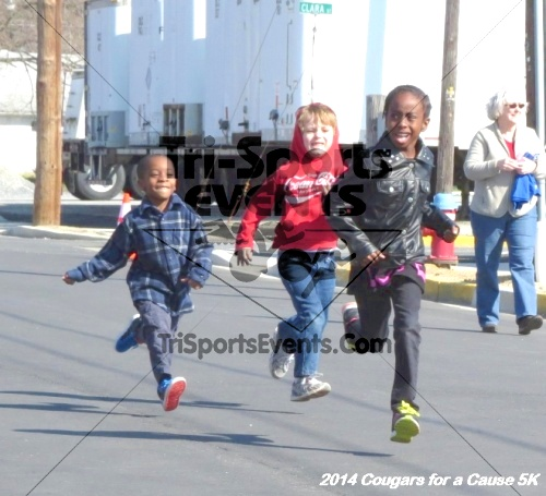 Cougars for a Cause 5K for Ben<br><br><br><br><a href='https://www.trisportsevents.com/pics/14_Cougars_for_a_Cause_5K_002.JPG' download='14_Cougars_for_a_Cause_5K_002.JPG'>Click here to download.</a><Br><a href='http://www.facebook.com/sharer.php?u=http:%2F%2Fwww.trisportsevents.com%2Fpics%2F14_Cougars_for_a_Cause_5K_002.JPG&t=Cougars for a Cause 5K for Ben' target='_blank'><img src='images/fb_share.png' width='100'></a>