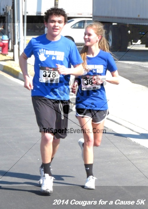 Cougars for a Cause 5K for Ben<br><br><br><br><a href='https://www.trisportsevents.com/pics/14_Cougars_for_a_Cause_5K_050.JPG' download='14_Cougars_for_a_Cause_5K_050.JPG'>Click here to download.</a><Br><a href='http://www.facebook.com/sharer.php?u=http:%2F%2Fwww.trisportsevents.com%2Fpics%2F14_Cougars_for_a_Cause_5K_050.JPG&t=Cougars for a Cause 5K for Ben' target='_blank'><img src='images/fb_share.png' width='100'></a>