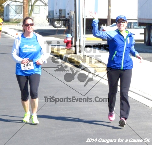 Cougars for a Cause 5K for Ben<br><br><br><br><a href='http://www.trisportsevents.com/pics/14_Cougars_for_a_Cause_5K_056.JPG' download='14_Cougars_for_a_Cause_5K_056.JPG'>Click here to download.</a><Br><a href='http://www.facebook.com/sharer.php?u=http:%2F%2Fwww.trisportsevents.com%2Fpics%2F14_Cougars_for_a_Cause_5K_056.JPG&t=Cougars for a Cause 5K for Ben' target='_blank'><img src='images/fb_share.png' width='100'></a>