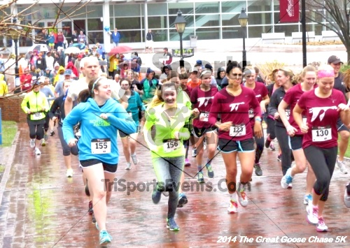 The Great Goose Chase 5K<br><br><br><br><a href='https://www.trisportsevents.com/pics/14_Goose_Chase_5K_007.JPG' download='14_Goose_Chase_5K_007.JPG'>Click here to download.</a><Br><a href='http://www.facebook.com/sharer.php?u=http:%2F%2Fwww.trisportsevents.com%2Fpics%2F14_Goose_Chase_5K_007.JPG&t=The Great Goose Chase 5K' target='_blank'><img src='images/fb_share.png' width='100'></a>