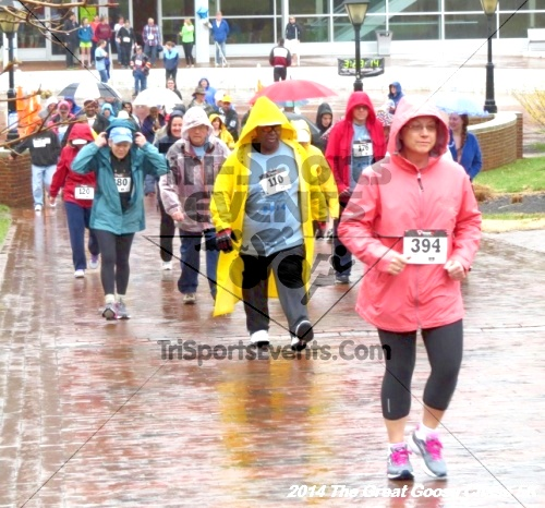 The Great Goose Chase 5K<br><br><br><br><a href='https://www.trisportsevents.com/pics/14_Goose_Chase_5K_012.JPG' download='14_Goose_Chase_5K_012.JPG'>Click here to download.</a><Br><a href='http://www.facebook.com/sharer.php?u=http:%2F%2Fwww.trisportsevents.com%2Fpics%2F14_Goose_Chase_5K_012.JPG&t=The Great Goose Chase 5K' target='_blank'><img src='images/fb_share.png' width='100'></a>