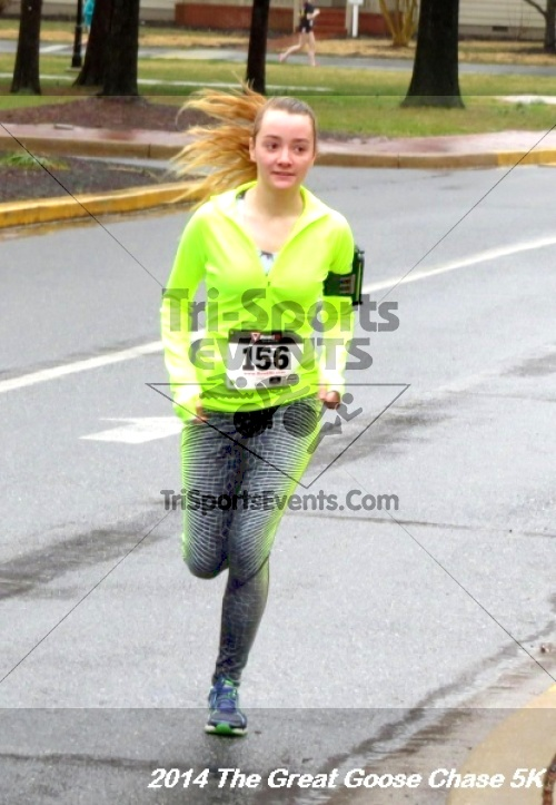 The Great Goose Chase 5K<br><br><br><br><a href='https://www.trisportsevents.com/pics/14_Goose_Chase_5K_028.JPG' download='14_Goose_Chase_5K_028.JPG'>Click here to download.</a><Br><a href='http://www.facebook.com/sharer.php?u=http:%2F%2Fwww.trisportsevents.com%2Fpics%2F14_Goose_Chase_5K_028.JPG&t=The Great Goose Chase 5K' target='_blank'><img src='images/fb_share.png' width='100'></a>