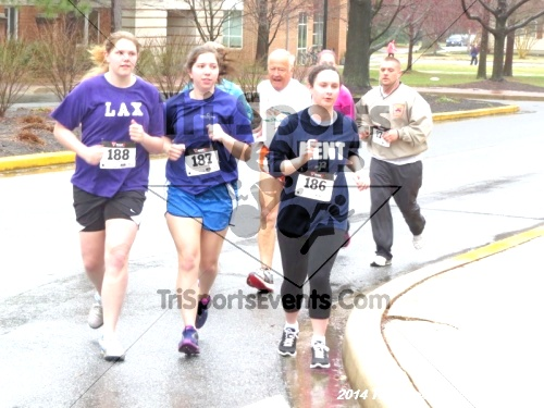 The Great Goose Chase 5K<br><br><br><br><a href='https://www.trisportsevents.com/pics/14_Goose_Chase_5K_048.JPG' download='14_Goose_Chase_5K_048.JPG'>Click here to download.</a><Br><a href='http://www.facebook.com/sharer.php?u=http:%2F%2Fwww.trisportsevents.com%2Fpics%2F14_Goose_Chase_5K_048.JPG&t=The Great Goose Chase 5K' target='_blank'><img src='images/fb_share.png' width='100'></a>