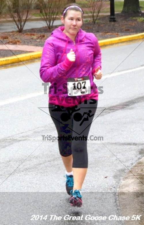The Great Goose Chase 5K<br><br><br><br><a href='http://www.trisportsevents.com/pics/14_Goose_Chase_5K_057.JPG' download='14_Goose_Chase_5K_057.JPG'>Click here to download.</a><Br><a href='http://www.facebook.com/sharer.php?u=http:%2F%2Fwww.trisportsevents.com%2Fpics%2F14_Goose_Chase_5K_057.JPG&t=The Great Goose Chase 5K' target='_blank'><img src='images/fb_share.png' width='100'></a>