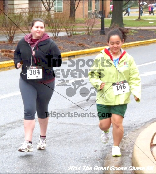 The Great Goose Chase 5K<br><br><br><br><a href='https://www.trisportsevents.com/pics/14_Goose_Chase_5K_058.JPG' download='14_Goose_Chase_5K_058.JPG'>Click here to download.</a><Br><a href='http://www.facebook.com/sharer.php?u=http:%2F%2Fwww.trisportsevents.com%2Fpics%2F14_Goose_Chase_5K_058.JPG&t=The Great Goose Chase 5K' target='_blank'><img src='images/fb_share.png' width='100'></a>