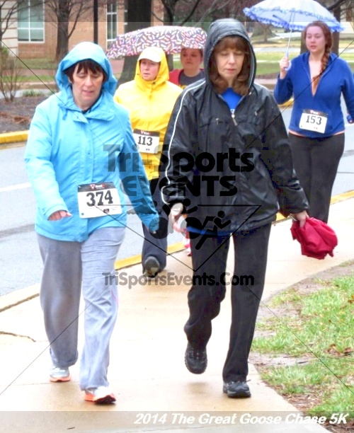 The Great Goose Chase 5K<br><br><br><br><a href='https://www.trisportsevents.com/pics/14_Goose_Chase_5K_067.JPG' download='14_Goose_Chase_5K_067.JPG'>Click here to download.</a><Br><a href='http://www.facebook.com/sharer.php?u=http:%2F%2Fwww.trisportsevents.com%2Fpics%2F14_Goose_Chase_5K_067.JPG&t=The Great Goose Chase 5K' target='_blank'><img src='images/fb_share.png' width='100'></a>