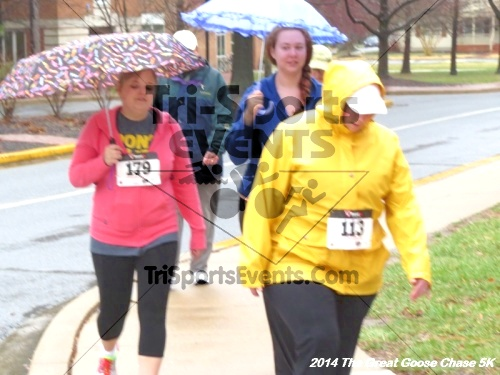 The Great Goose Chase 5K<br><br><br><br><a href='https://www.trisportsevents.com/pics/14_Goose_Chase_5K_071.JPG' download='14_Goose_Chase_5K_071.JPG'>Click here to download.</a><Br><a href='http://www.facebook.com/sharer.php?u=http:%2F%2Fwww.trisportsevents.com%2Fpics%2F14_Goose_Chase_5K_071.JPG&t=The Great Goose Chase 5K' target='_blank'><img src='images/fb_share.png' width='100'></a>