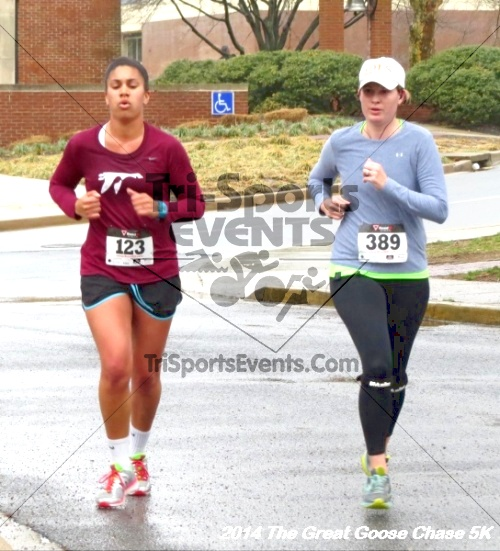 The Great Goose Chase 5K<br><br><br><br><a href='http://www.trisportsevents.com/pics/14_Goose_Chase_5K_110.JPG' download='14_Goose_Chase_5K_110.JPG'>Click here to download.</a><Br><a href='http://www.facebook.com/sharer.php?u=http:%2F%2Fwww.trisportsevents.com%2Fpics%2F14_Goose_Chase_5K_110.JPG&t=The Great Goose Chase 5K' target='_blank'><img src='images/fb_share.png' width='100'></a>