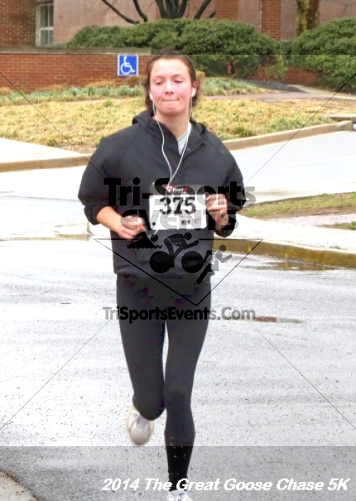 The Great Goose Chase 5K<br><br><br><br><a href='https://www.trisportsevents.com/pics/14_Goose_Chase_5K_116.JPG' download='14_Goose_Chase_5K_116.JPG'>Click here to download.</a><Br><a href='http://www.facebook.com/sharer.php?u=http:%2F%2Fwww.trisportsevents.com%2Fpics%2F14_Goose_Chase_5K_116.JPG&t=The Great Goose Chase 5K' target='_blank'><img src='images/fb_share.png' width='100'></a>