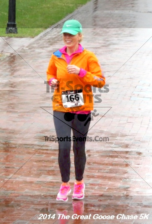The Great Goose Chase 5K<br><br><br><br><a href='http://www.trisportsevents.com/pics/14_Goose_Chase_5K_123.JPG' download='14_Goose_Chase_5K_123.JPG'>Click here to download.</a><Br><a href='http://www.facebook.com/sharer.php?u=http:%2F%2Fwww.trisportsevents.com%2Fpics%2F14_Goose_Chase_5K_123.JPG&t=The Great Goose Chase 5K' target='_blank'><img src='images/fb_share.png' width='100'></a>