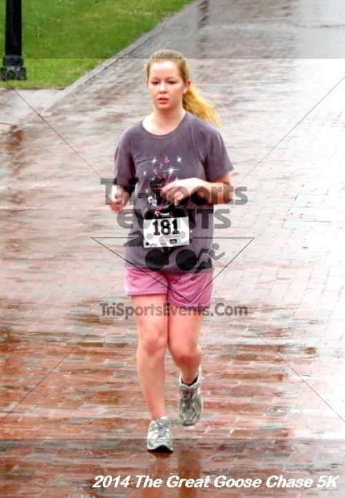 The Great Goose Chase 5K<br><br><br><br><a href='https://www.trisportsevents.com/pics/14_Goose_Chase_5K_126.JPG' download='14_Goose_Chase_5K_126.JPG'>Click here to download.</a><Br><a href='http://www.facebook.com/sharer.php?u=http:%2F%2Fwww.trisportsevents.com%2Fpics%2F14_Goose_Chase_5K_126.JPG&t=The Great Goose Chase 5K' target='_blank'><img src='images/fb_share.png' width='100'></a>