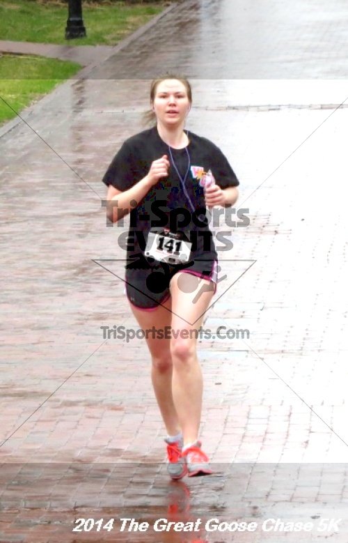 The Great Goose Chase 5K<br><br><br><br><a href='https://www.trisportsevents.com/pics/14_Goose_Chase_5K_130.JPG' download='14_Goose_Chase_5K_130.JPG'>Click here to download.</a><Br><a href='http://www.facebook.com/sharer.php?u=http:%2F%2Fwww.trisportsevents.com%2Fpics%2F14_Goose_Chase_5K_130.JPG&t=The Great Goose Chase 5K' target='_blank'><img src='images/fb_share.png' width='100'></a>
