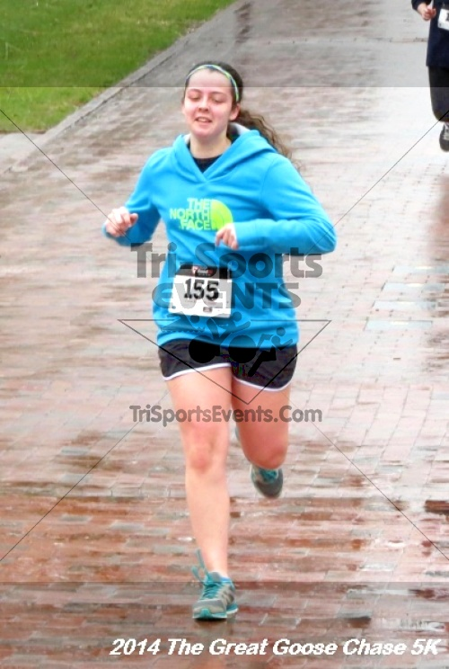 The Great Goose Chase 5K<br><br><br><br><a href='http://www.trisportsevents.com/pics/14_Goose_Chase_5K_132.JPG' download='14_Goose_Chase_5K_132.JPG'>Click here to download.</a><Br><a href='http://www.facebook.com/sharer.php?u=http:%2F%2Fwww.trisportsevents.com%2Fpics%2F14_Goose_Chase_5K_132.JPG&t=The Great Goose Chase 5K' target='_blank'><img src='images/fb_share.png' width='100'></a>