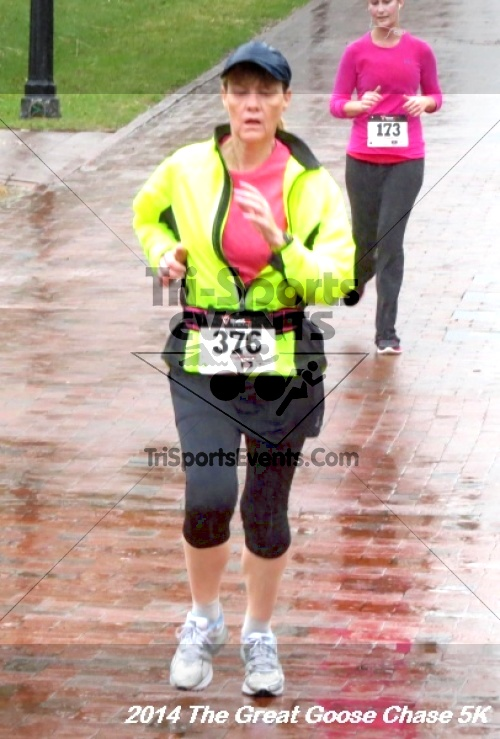 The Great Goose Chase 5K<br><br><br><br><a href='https://www.trisportsevents.com/pics/14_Goose_Chase_5K_136.JPG' download='14_Goose_Chase_5K_136.JPG'>Click here to download.</a><Br><a href='http://www.facebook.com/sharer.php?u=http:%2F%2Fwww.trisportsevents.com%2Fpics%2F14_Goose_Chase_5K_136.JPG&t=The Great Goose Chase 5K' target='_blank'><img src='images/fb_share.png' width='100'></a>