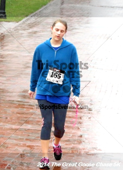 The Great Goose Chase 5K<br><br><br><br><a href='https://www.trisportsevents.com/pics/14_Goose_Chase_5K_138.JPG' download='14_Goose_Chase_5K_138.JPG'>Click here to download.</a><Br><a href='http://www.facebook.com/sharer.php?u=http:%2F%2Fwww.trisportsevents.com%2Fpics%2F14_Goose_Chase_5K_138.JPG&t=The Great Goose Chase 5K' target='_blank'><img src='images/fb_share.png' width='100'></a>