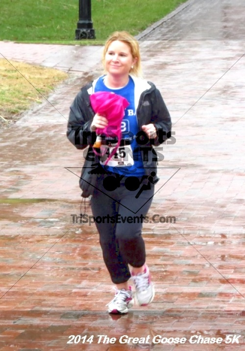 The Great Goose Chase 5K<br><br><br><br><a href='http://www.trisportsevents.com/pics/14_Goose_Chase_5K_142.JPG' download='14_Goose_Chase_5K_142.JPG'>Click here to download.</a><Br><a href='http://www.facebook.com/sharer.php?u=http:%2F%2Fwww.trisportsevents.com%2Fpics%2F14_Goose_Chase_5K_142.JPG&t=The Great Goose Chase 5K' target='_blank'><img src='images/fb_share.png' width='100'></a>