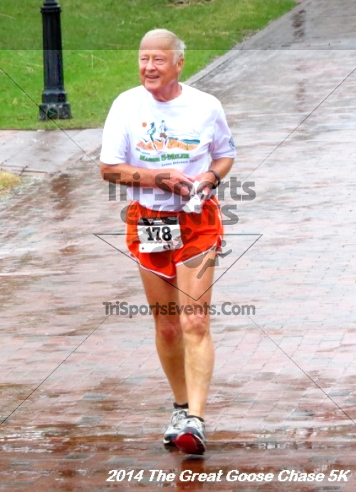The Great Goose Chase 5K<br><br><br><br><a href='https://www.trisportsevents.com/pics/14_Goose_Chase_5K_143.JPG' download='14_Goose_Chase_5K_143.JPG'>Click here to download.</a><Br><a href='http://www.facebook.com/sharer.php?u=http:%2F%2Fwww.trisportsevents.com%2Fpics%2F14_Goose_Chase_5K_143.JPG&t=The Great Goose Chase 5K' target='_blank'><img src='images/fb_share.png' width='100'></a>