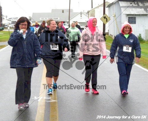 Journey for a Cure 5K Run/Walk<br><br><br><br><a href='https://www.trisportsevents.com/pics/14_Journey_for_Cure_5K_047.JPG' download='14_Journey_for_Cure_5K_047.JPG'>Click here to download.</a><Br><a href='http://www.facebook.com/sharer.php?u=http:%2F%2Fwww.trisportsevents.com%2Fpics%2F14_Journey_for_Cure_5K_047.JPG&t=Journey for a Cure 5K Run/Walk' target='_blank'><img src='images/fb_share.png' width='100'></a>