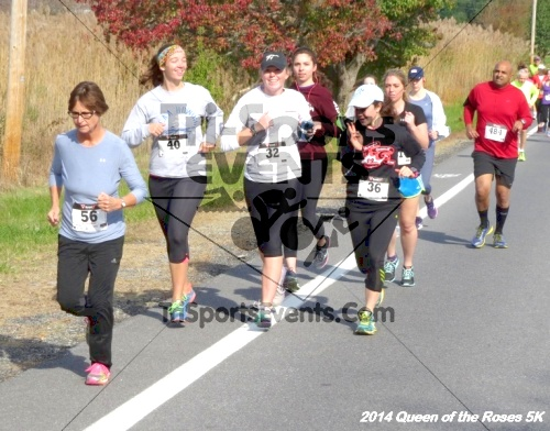 Queen of the Roses 5K Run/Walk<br><br><br><br><a href='http://www.trisportsevents.com/pics/14_Queen_of_Roses_5K_021.JPG' download='14_Queen_of_Roses_5K_021.JPG'>Click here to download.</a><Br><a href='http://www.facebook.com/sharer.php?u=http:%2F%2Fwww.trisportsevents.com%2Fpics%2F14_Queen_of_Roses_5K_021.JPG&t=Queen of the Roses 5K Run/Walk' target='_blank'><img src='images/fb_share.png' width='100'></a>