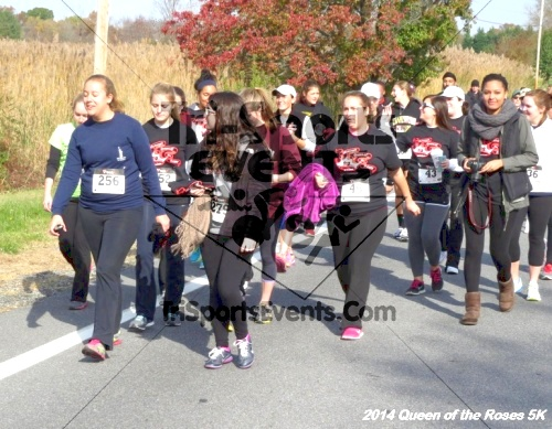 Queen of the Roses 5K Run/Walk<br><br><br><br><a href='http://www.trisportsevents.com/pics/14_Queen_of_Roses_5K_053.JPG' download='14_Queen_of_Roses_5K_053.JPG'>Click here to download.</a><Br><a href='http://www.facebook.com/sharer.php?u=http:%2F%2Fwww.trisportsevents.com%2Fpics%2F14_Queen_of_Roses_5K_053.JPG&t=Queen of the Roses 5K Run/Walk' target='_blank'><img src='images/fb_share.png' width='100'></a>