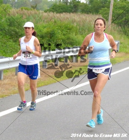 Race to Erase MS 5K Run/Walk<br><br><br><br><a href='https://www.trisportsevents.com/pics/14_Race_to_Erase_MS_5K_027.JPG' download='14_Race_to_Erase_MS_5K_027.JPG'>Click here to download.</a><Br><a href='http://www.facebook.com/sharer.php?u=http:%2F%2Fwww.trisportsevents.com%2Fpics%2F14_Race_to_Erase_MS_5K_027.JPG&t=Race to Erase MS 5K Run/Walk' target='_blank'><img src='images/fb_share.png' width='100'></a>
