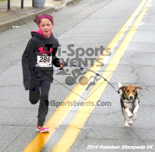 Rock Hall Reindeer Stampede 5K Run/Walk<br><br><br><br><a href='http://www.trisportsevents.com/pics/14_Reindeer_Stampede_5K_094.JPG' download='14_Reindeer_Stampede_5K_094.JPG'>Click here to download.</a><Br><a href='http://www.facebook.com/sharer.php?u=http:%2F%2Fwww.trisportsevents.com%2Fpics%2F14_Reindeer_Stampede_5K_094.JPG&t=Rock Hall Reindeer Stampede 5K Run/Walk' target='_blank'><img src='images/fb_share.png' width='100'></a>