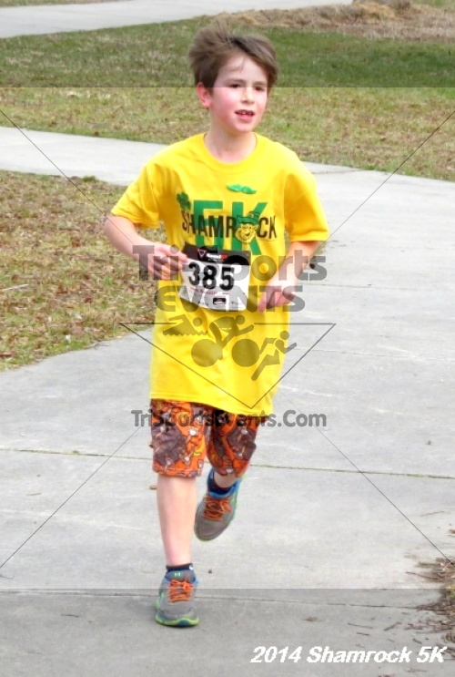 Shamrock Scramble 5K Run/Walk<br><br><br><br><a href='http://www.trisportsevents.com/pics/14_Shamrock_5K_314.JPG' download='14_Shamrock_5K_314.JPG'>Click here to download.</a><Br><a href='http://www.facebook.com/sharer.php?u=http:%2F%2Fwww.trisportsevents.com%2Fpics%2F14_Shamrock_5K_314.JPG&t=Shamrock Scramble 5K Run/Walk' target='_blank'><img src='images/fb_share.png' width='100'></a>