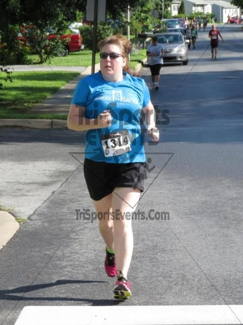 Delaware Pharmacy 5K - In Memory of Don Holst<br><br><br><br><a href='https://www.trisportsevents.com/pics/15_Delaware_Pharmacy_5K_048.JPG' download='15_Delaware_Pharmacy_5K_048.JPG'>Click here to download.</a><Br><a href='http://www.facebook.com/sharer.php?u=http:%2F%2Fwww.trisportsevents.com%2Fpics%2F15_Delaware_Pharmacy_5K_048.JPG&t=Delaware Pharmacy 5K - In Memory of Don Holst' target='_blank'><img src='images/fb_share.png' width='100'></a>