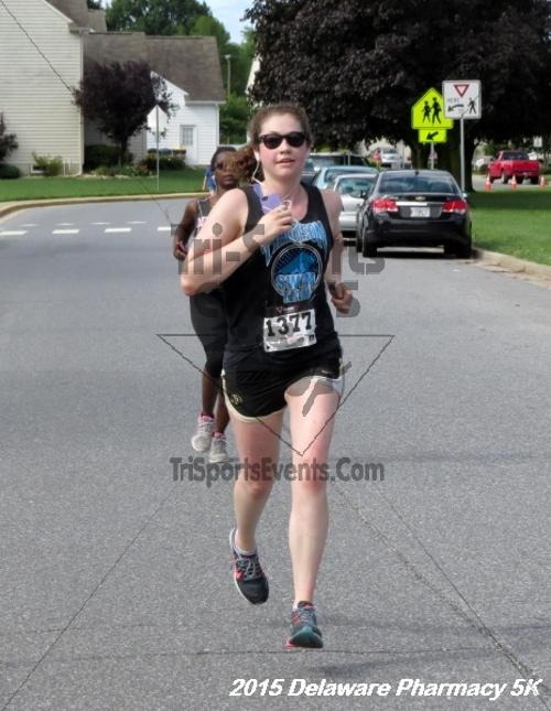 Delaware Pharmacy 5K - In Memory of Don Holst<br><br><br><br><a href='https://www.trisportsevents.com/pics/15_Delaware_Pharmacy_5K_094.JPG' download='15_Delaware_Pharmacy_5K_094.JPG'>Click here to download.</a><Br><a href='http://www.facebook.com/sharer.php?u=http:%2F%2Fwww.trisportsevents.com%2Fpics%2F15_Delaware_Pharmacy_5K_094.JPG&t=Delaware Pharmacy 5K - In Memory of Don Holst' target='_blank'><img src='images/fb_share.png' width='100'></a>