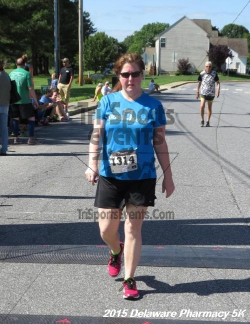 Delaware Pharmacy 5K - In Memory of Don Holst<br><br><br><br><a href='https://www.trisportsevents.com/pics/15_Delaware_Pharmacy_5K_133.JPG' download='15_Delaware_Pharmacy_5K_133.JPG'>Click here to download.</a><Br><a href='http://www.facebook.com/sharer.php?u=http:%2F%2Fwww.trisportsevents.com%2Fpics%2F15_Delaware_Pharmacy_5K_133.JPG&t=Delaware Pharmacy 5K - In Memory of Don Holst' target='_blank'><img src='images/fb_share.png' width='100'></a>