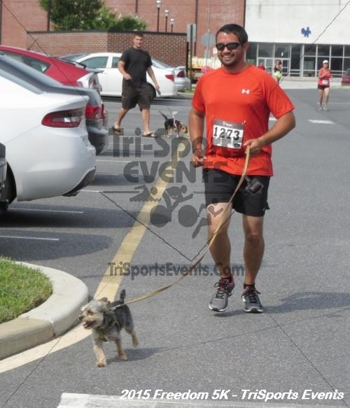 Freedom 5K Run/Walk<br><br><br><br><a href='http://www.trisportsevents.com/pics/15_Freedom_5K_195.JPG' download='15_Freedom_5K_195.JPG'>Click here to download.</a><Br><a href='http://www.facebook.com/sharer.php?u=http:%2F%2Fwww.trisportsevents.com%2Fpics%2F15_Freedom_5K_195.JPG&t=Freedom 5K Run/Walk' target='_blank'><img src='images/fb_share.png' width='100'></a>
