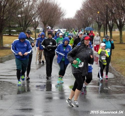 Shamrock 5K Run/Walk<br><br><br><br><a href='https://www.trisportsevents.com/pics/15_Shamrock_5K_019.JPG' download='15_Shamrock_5K_019.JPG'>Click here to download.</a><Br><a href='http://www.facebook.com/sharer.php?u=http:%2F%2Fwww.trisportsevents.com%2Fpics%2F15_Shamrock_5K_019.JPG&t=Shamrock 5K Run/Walk' target='_blank'><img src='images/fb_share.png' width='100'></a>